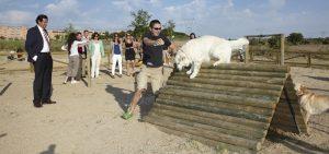 que hacer en Burgos con perros